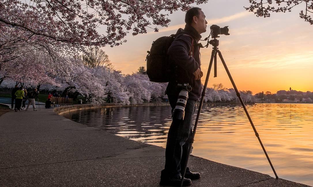 O fotógrafo Tony Chung acompanhou o amanhecer na capital americana para fotografar as árvores floridas no Tidal Basin J. David Ake / AP