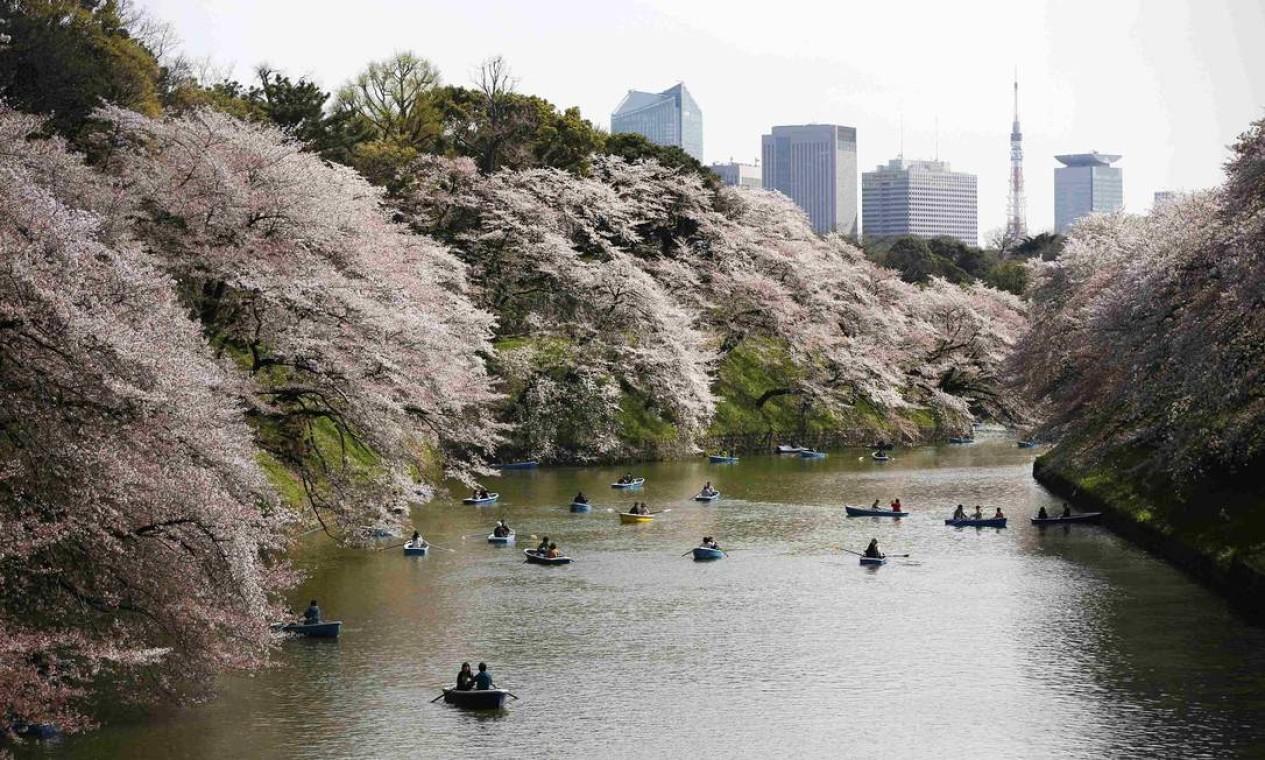 Passeio de barco em Chidorigafuchi é emoldurado pelas cerejeiras que atingem o auge da floração no início do mês de abril, na primavera de Tóquio Foto: ISSEI KATO / REUTERS
