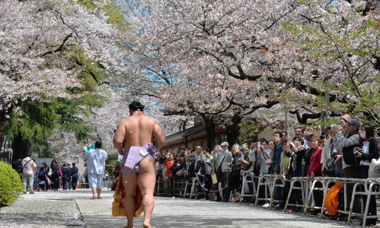 Lutador de sumô caminha sob as cerejeiras em flor numa exibição do esporte no templo Yasukuni em Tóquio Foto: KAZUHIRO NOGI / AFP