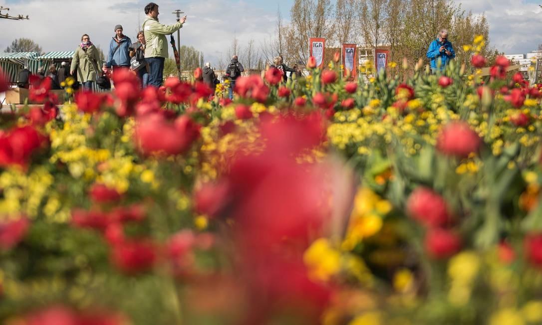 Jardins muiticoloridos atraem os visitante à International Garden Exhibition (IGA) 2017, que acontece até outubro no Gaerten der Welt em Berlim Foto: STEFFI LOOS / AFP
