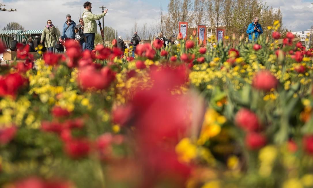 Jardins muiticoloridos atraem os visitante à International Garden Exhibition (IGA) 2017, que acontece até outubro no Gaerten der Welt em Berlim STEFFI LOOS / AFP