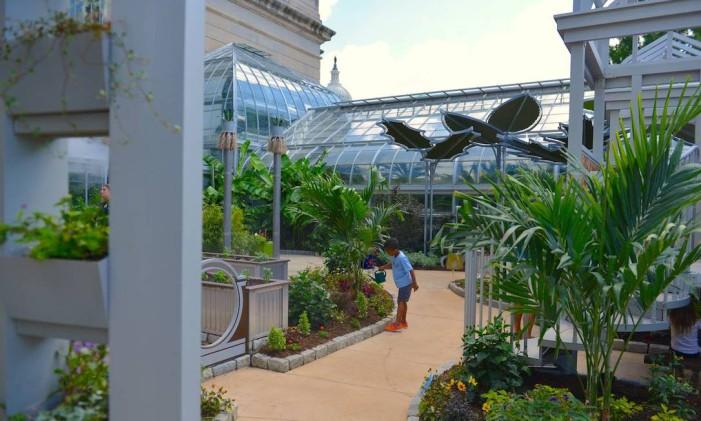 Washington DC / Estados Unidos / Jardim Botânico Foto: US Botanical Garden/Divulgação / Jardim Botânico de Washington DC