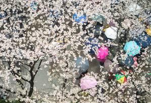Primavera. Na universidade de Wuhan, na China, pedestres se protegem da