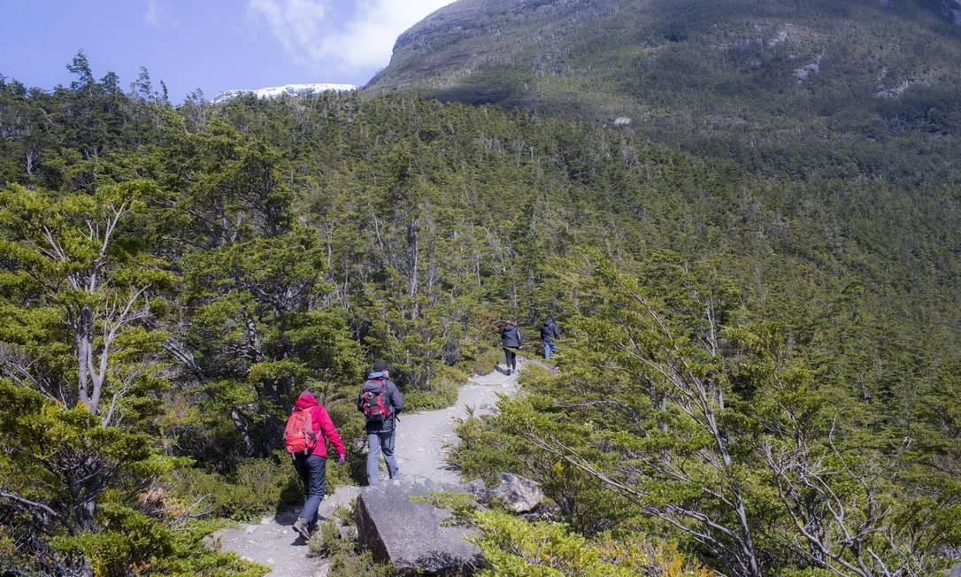 Trilha. Caminhada pelo Parque Nacional Bernardo O'Higgins, na Patagônia chilena Foto: Edilson Dantas / Agência O Globo