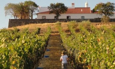 A Herdade do Vau, em Serpa, recebe os viistantes em propriedade ao estilo hotel fazenda Foto: Divulgação
