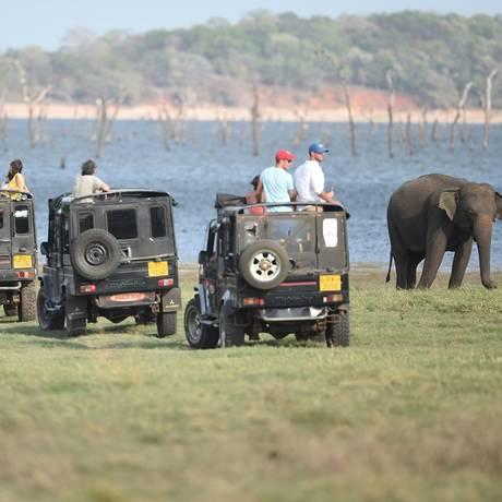 Jipes com turistas observam elefante durante safári fotográfico a Kaudulla National Park em Habarana, no Sri Lanka Foto: ISHARA S. KODIKARA / AFP