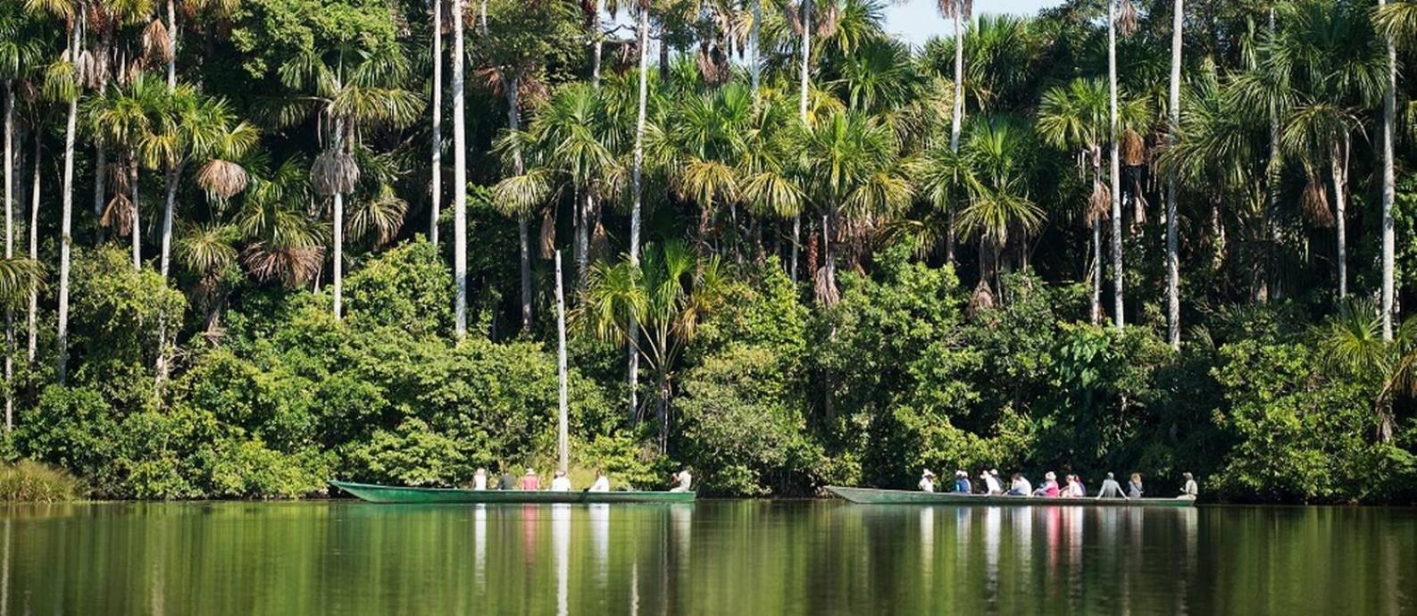 Excursões para hóspedes do Inkaterra Hacienda Concepción, em Tambopata, na região da Amazônia no Peru Foto: Alfredo Fernandez / Divulgação/Inkaterra