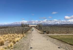 Aos pés da cordilheira. A vinícola Salentein está entre os destaques na rota dos vinhos de Mendoza. A região oferece ainda boa gastronomia e produção de azeite de oliva Foto: Janaína Figueiredo