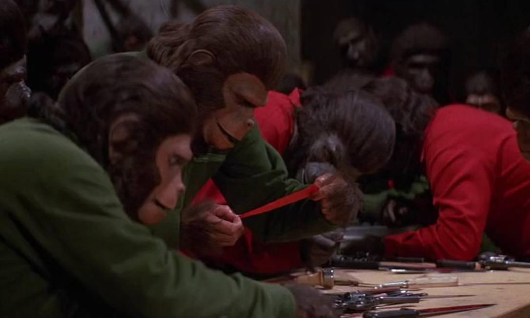 'A conquista do planeta dos macacos': O diretor J. Lee Thompson encarregou-se de continuar a história em 1972. Depois de anos se escondendo, Caesar (Roddy McDowall), o filho de Cornélius e Zira, prepara-se para comandar uma revolução dos macacos contra a dominação dos homens. Foi o filme com menor orçamento da série. Foto: Reprodução