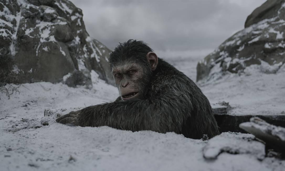 No novo 'Planeta dos macacos', guerra é ilustrada por comentários ...