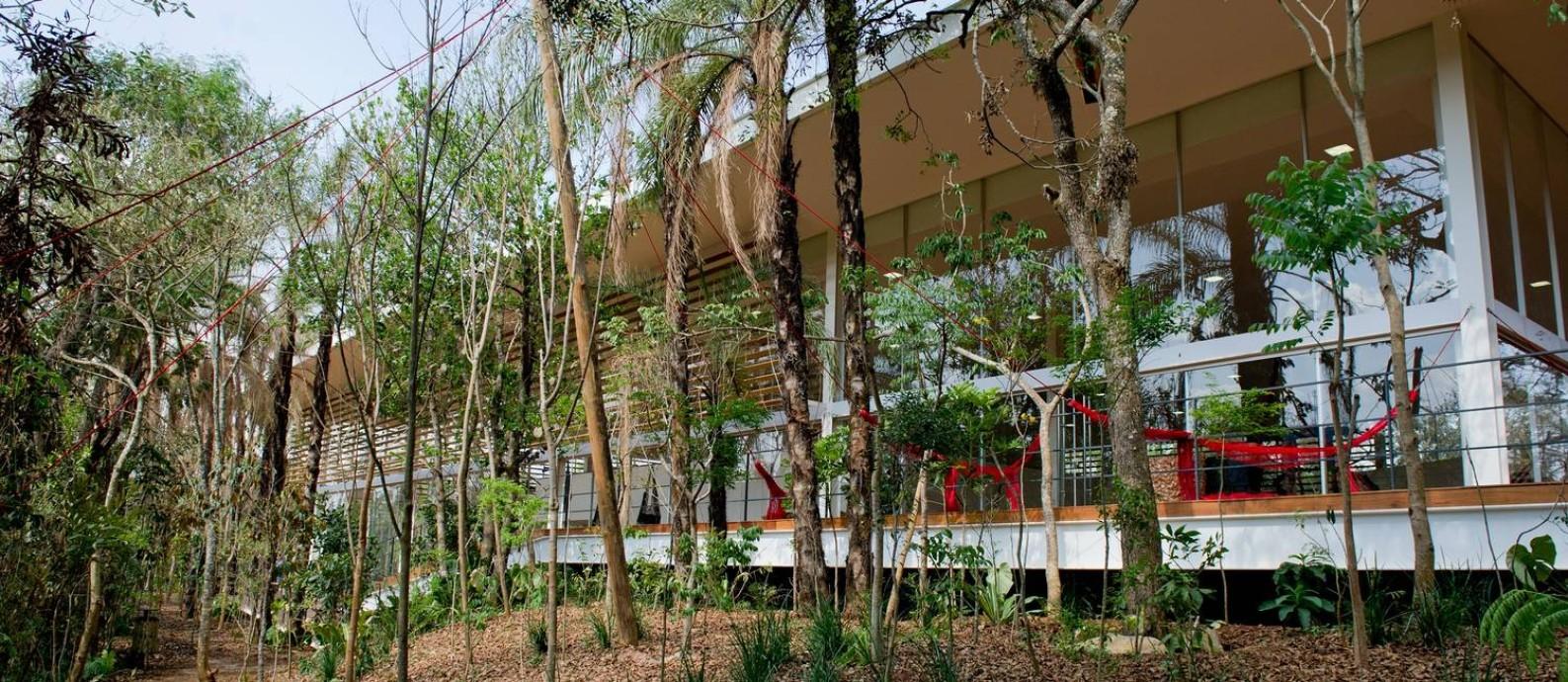 A Galeria Psicoativa de Tunga é uma das preciosidades do local Foto: Daniela Paoliello / Divulgação