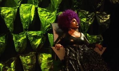 Elza Soares quer fazer show e deixar legado na comunidade de Centreville, em Santo André Foto: Divulgação