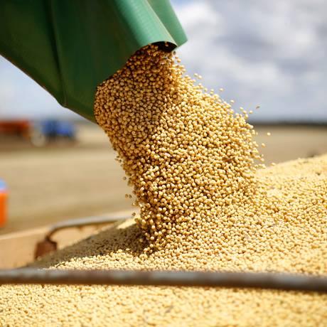 Colheita de soja no Oeste da Bahia - Fazenda Mingori, no municipio de Luiz Eduardo Magahaes (BA), na divisa com Tocantins. Foto: Fábio Rossi / Agência O Globo