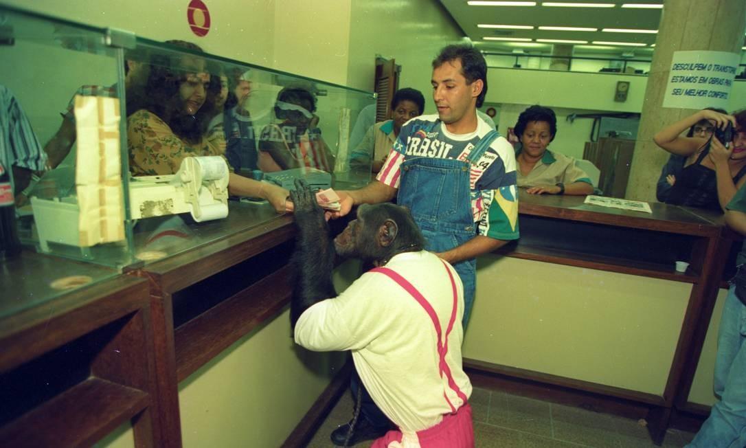 Bem adestrado, o macaco Hulk troca os cruzeiros reais por reais os cruzeiros reias do seu treinador, que o levou para passear numa agência do Banco Mercantil do Brasil, no Centro do Rio Foto: Agência O Globo - 01/07/1994
