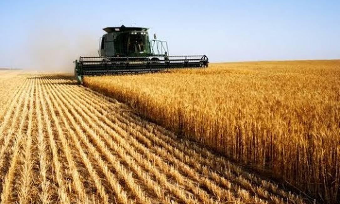 Setor agrícola será um dos mais beneficiados Foto: Reprodução