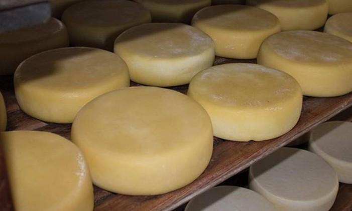 Produção de queijo Canastra Foto: Data Sebrae
