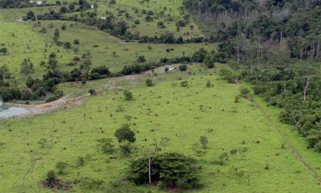 Amazônia perde mais de R$ 1 bi com Imposto Territorial Rural Foto: Reprodução