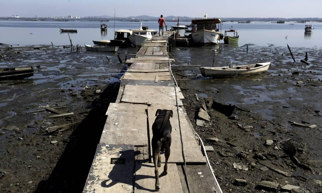Praia de Tubiacanga na Ilha do Governador: esgoto corre a céu aberto em direção a Baía de Guanabara Foto: Custódio Coimbra / Agência O Globo