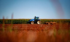 Produção de milho em fazenda próxima ao Distrito Federal, no Centro-Oeste: enquanto economia do país encolheu 1,5% no 1º trimestre do ano, a agropecuária cresceu 0,6% e deve ter alta de 3% em 2020, movida por exportações Foto: Pablo Jacob