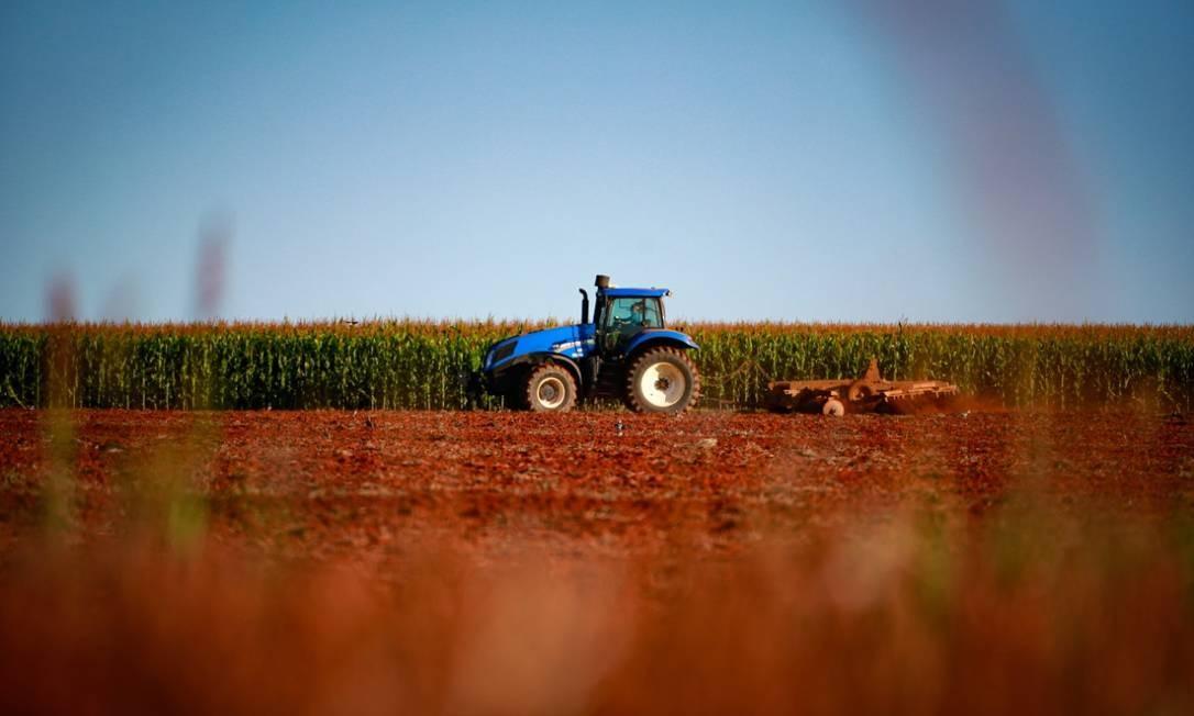 Produção de milho em fazenda próxima ao Distrito Federal; agronegócio brasileiro deve viver novo recorde em 2021 Foto: Pablo Jacob/Agência O Globo