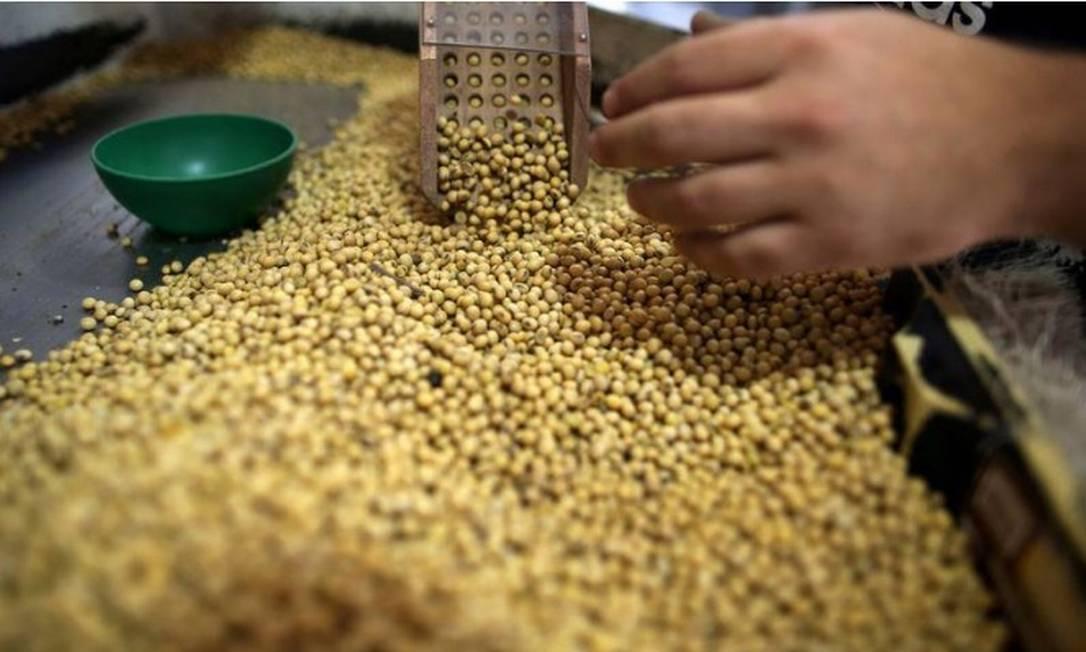 Governo pode zerar tarifa de importação da soja Foto: Reuters