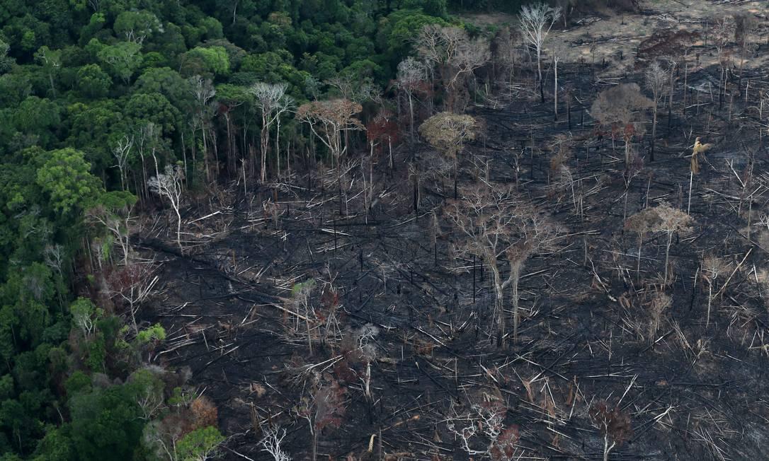 Área da Floresta Amazônica afetada pelas queimadas que chamaram a atenção do mundo em 2019 Foto: Ricardo Moraes / Reuters