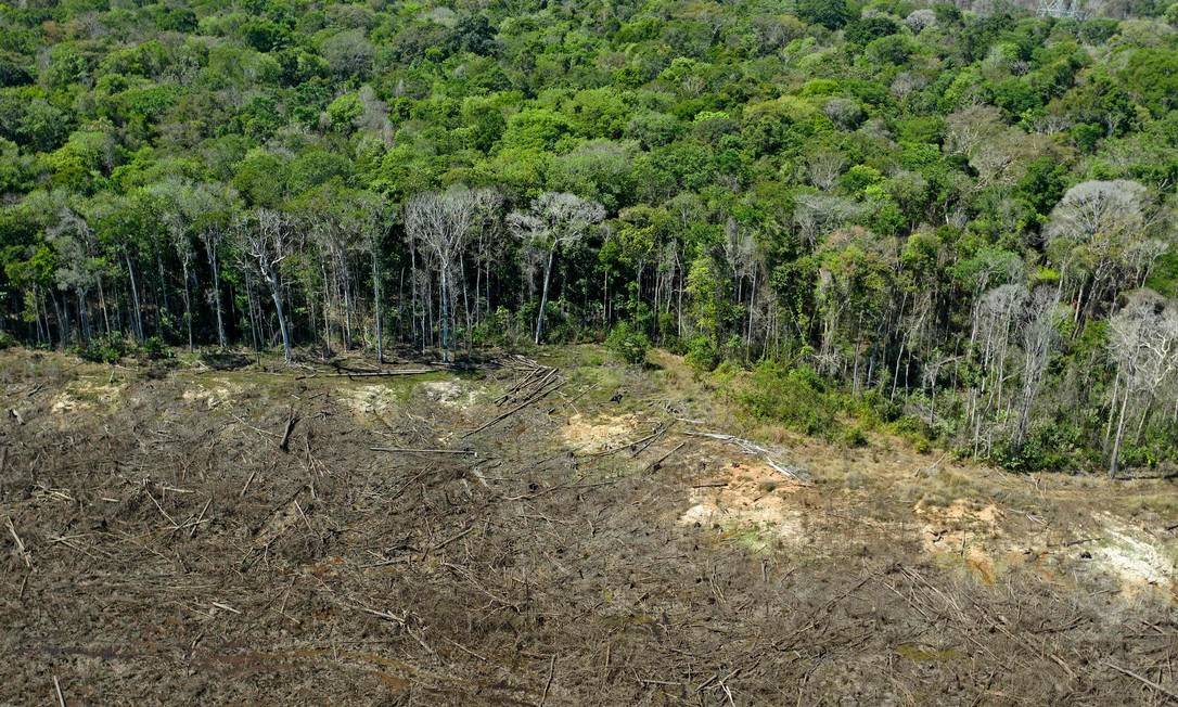 Desmatamento da Amazônia, em foto de agosto de 2020, em Mato Grosso Foto: FLORIAN PLAUCHEUR / AFP