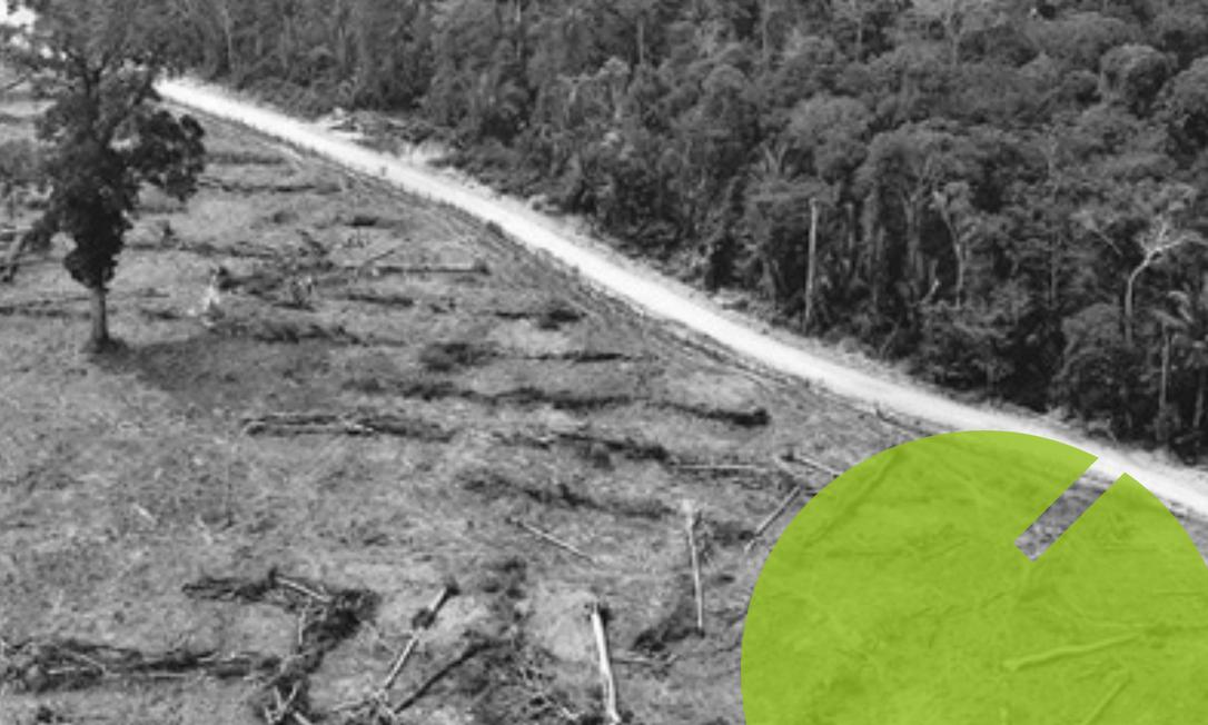 Área de floresta em Rondônia devastada pelo fogo Foto: Carlos Fabal/AFP