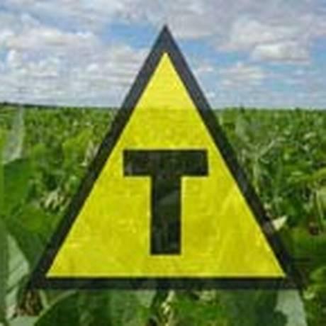 Símbolo identifica que produto é transgênico Foto: Divulgação