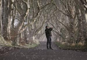The Dark Hedges, o corredor de árvores sombrias em que se gravaram cenas de Game of Thrones, tornou-se um dos pontos mais visitados da Irlanda. Foto: Charles McQuillan / Getty Images