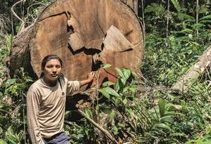 O cacique André mostra área destruída dentro da reserva caripuna. Uma área equivalente a 11 mil campos de futebol foi desmatada na reserva entre setembro de 2015 e maio de 2018. Foto: Rogério Assis / Greenpeace