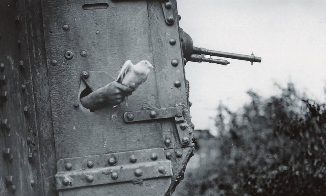 Na Primeira Guerra Mundial, os pombos serviram no regimento dos tanques, no serviço militar aéreo e na aviação naval. Na Segunda Guerra, foram usados de forma ainda mais abrangente e intensa. Foto: Pen and Sword Books / UIG / Getty Images