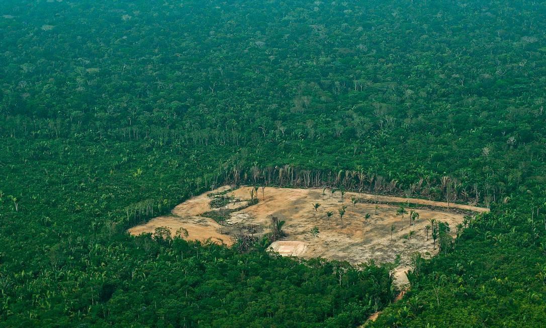 O desmatamento na Amazônia vem crescendo no governo Bolsonaro, segundo os alertas do Inpe. Só em julho, o aumento foi de 304% em relação ao mesmo período do ano passado Foto: Carl de Souza / AFP