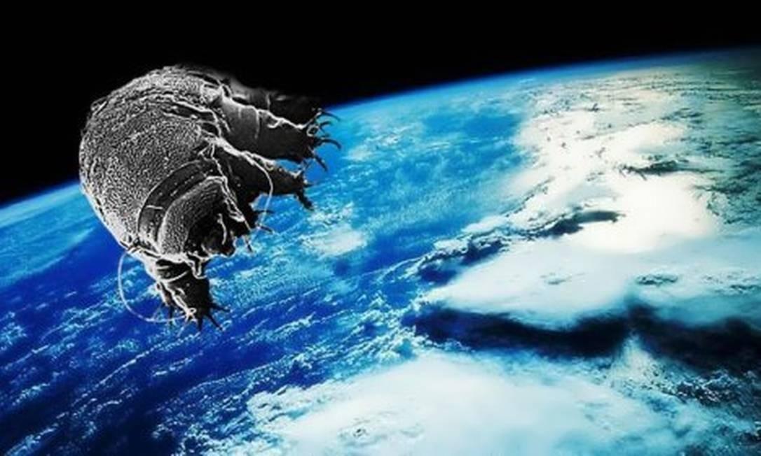 Ilustração de tardígrado no espaço: animais já resistiram dias expostos ao ambiente extremo Foto: Reprodução