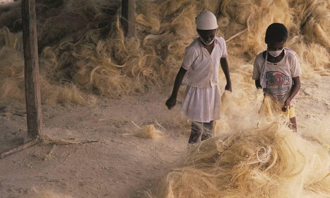 Crianças trabalham na indústria de sisal no interior da Bahia, em registro feito em 1987. Foto: Salomon Cytrynowicz / Pulsar Imagens