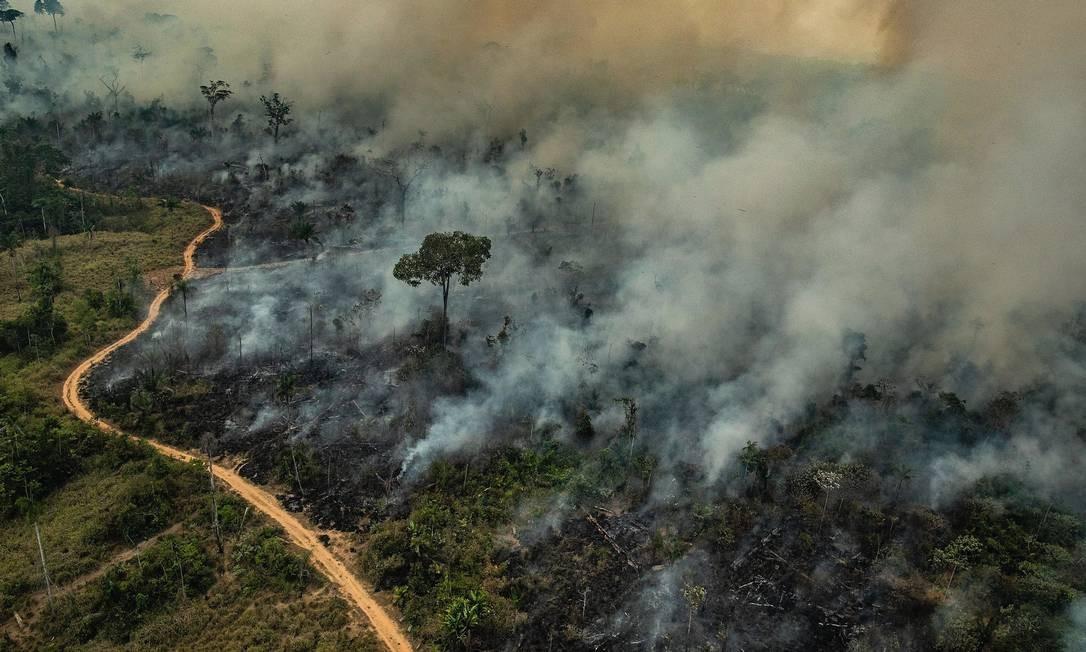 Imagem divulgada pelo Greenpeace mostra área de queimada na Floresta Amazônica em 23 de agosto. Foto: Victor Moriyama / Greenpeace / AFP
