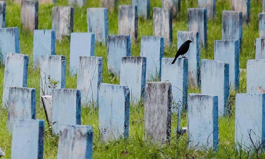 Sepultamentos no cemitério Parque Bom Jardim, em Fortaleza, onde serão licitadas novas unidades de jazigo em razão da pandemia. Foto: Mateus Dantas / Zimel Press / Agência O Globo