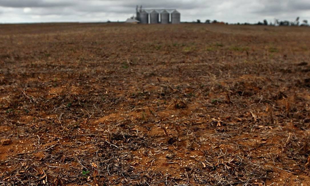 Um campo de cultivo de soja é encontrado em área desmatada no Pará. Depois de muitos avanços regulatórios de proteção ambiental, o desmatamento voltou a subir em todos os biomas do Brasil, em especial no Amazônico e no Cerrado. Foto: Mario Tama / Getty Images