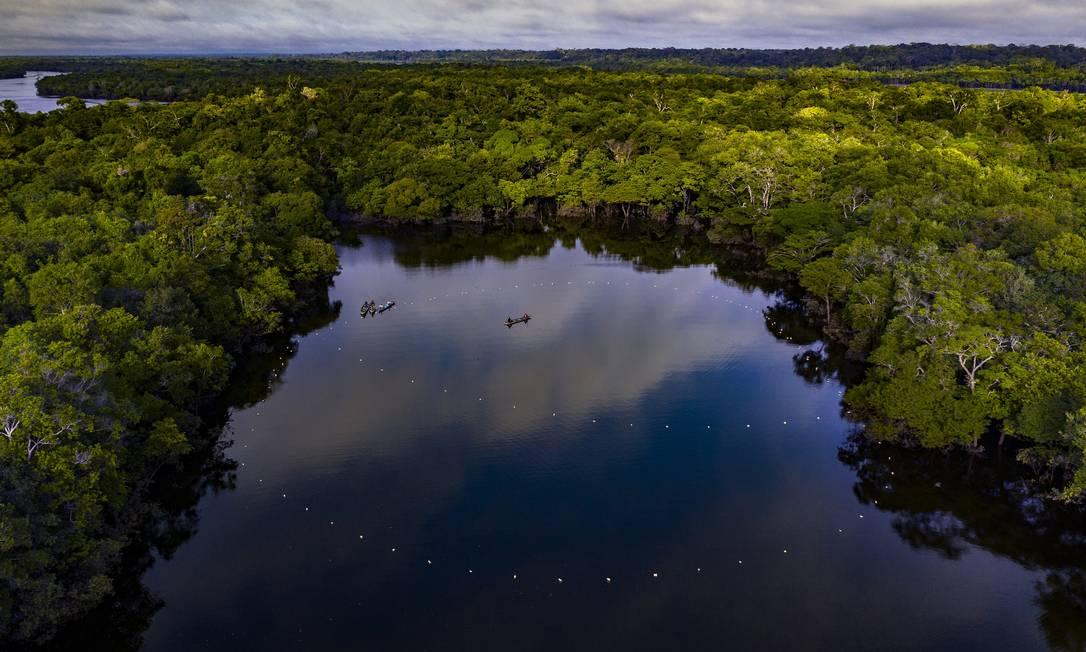 Índígenas paumari usam malhadeiras (redes) para pescar o pirarucu no Rio Tapauá, dentro da terra indígena Paumari. Foto: Marizilda Cruppe / Divulgação