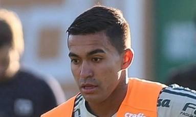 Dudu: estava na lista de Tite para a Copa Foto: Divulgação/Palmeiras