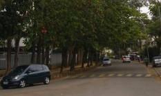 Moradores pedem poda de árvores em condomínio Foto: Eu-Repórter / Leitor Marco Crista