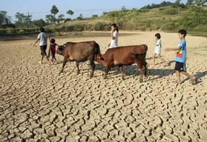 Cientistas defendem que o registro da seca mereça relatórios exclusivos e atualizados Foto: REUTERS