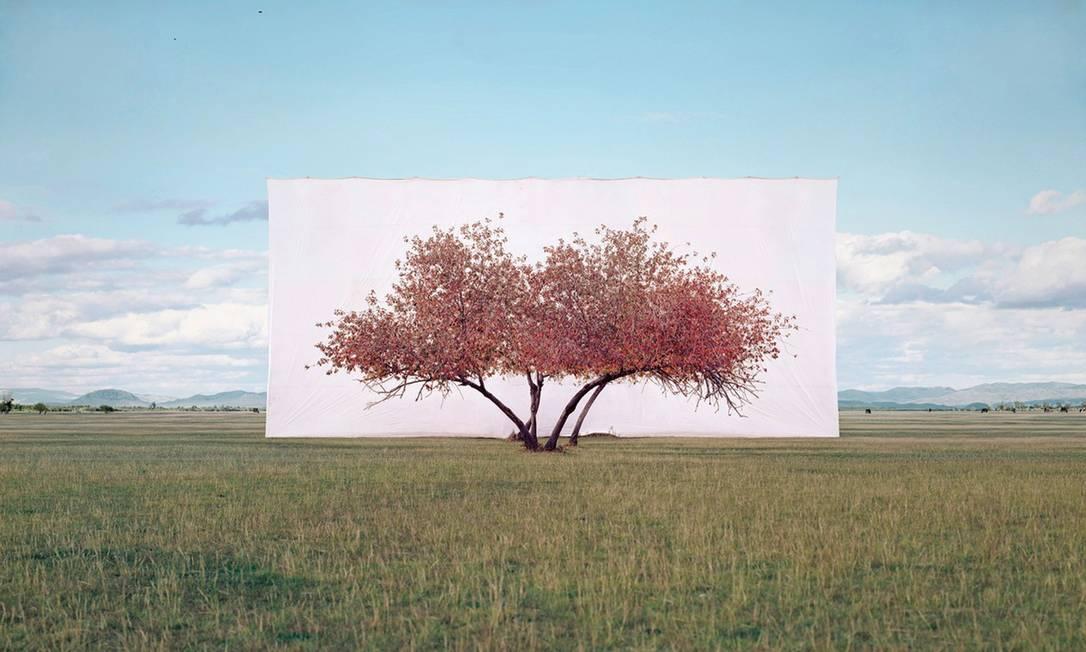 Uma das imagens da série criada por Myoung Ho Lee: paisagem transformada em estúdio Foto: Divulgação/Myoung Ho Lee