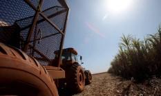 Máquina trabalha em fazenda de cana de açúcar, na cidade de Colômbia (SP) Foto: Dado Galdieri / Bloomberg