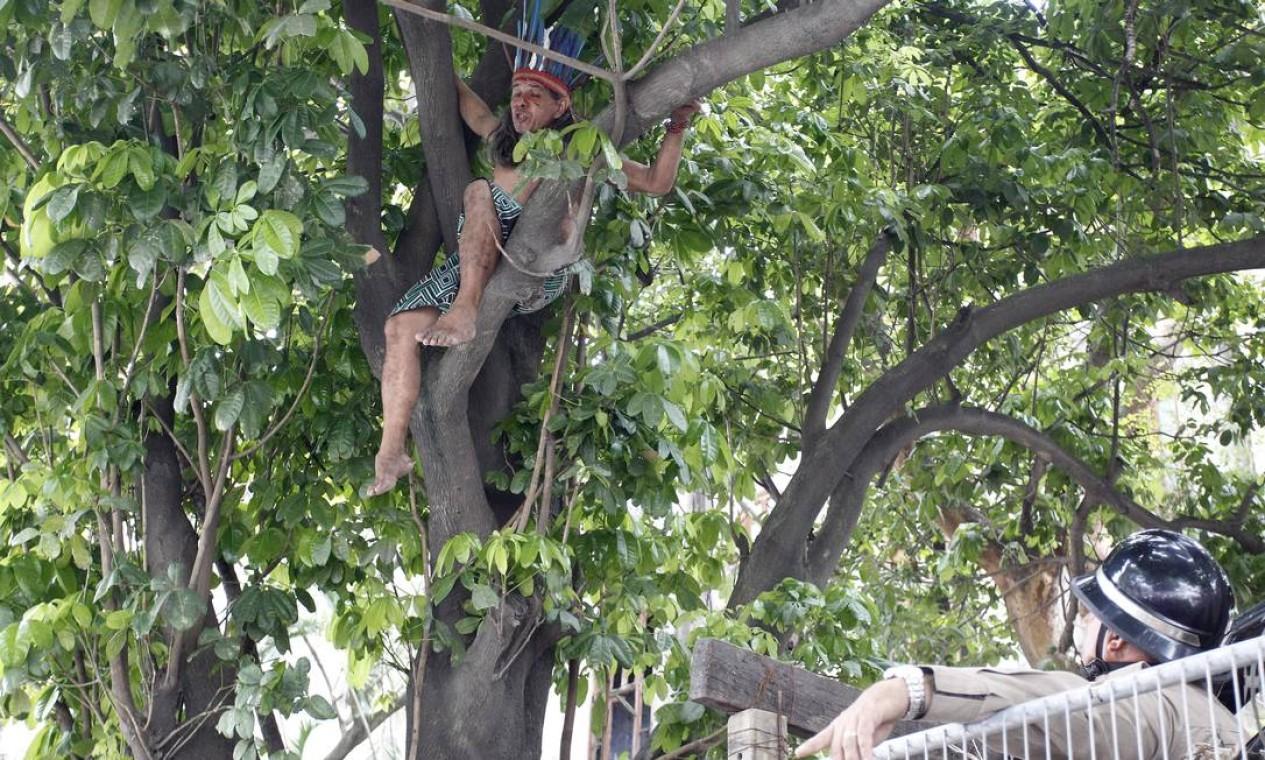 Índio resiste à desocupação em cima de uma árvore Foto: Pablo Jacob / Agência O Globo