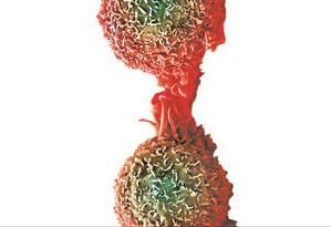 Célula do câncer de pulmão, um dos mais prevalentes Foto: Latinstock