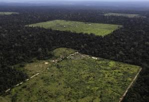 Alerta. Código Florestal mais brando explicaria aumento do desmatamento Foto: Nacho Doce/Reuters