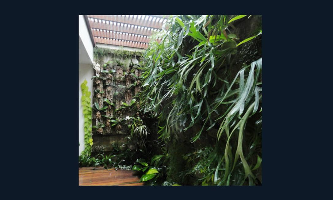 fotos jardim quadrado:Pergolado no térreo abriga um jardim vertical de 15 metros quadrados