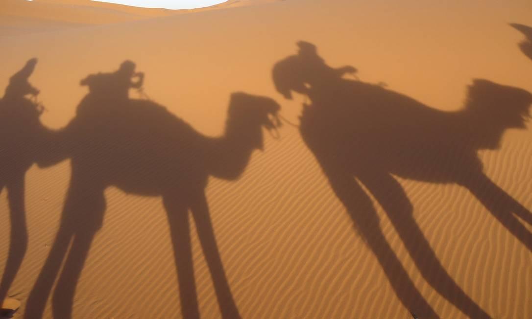 Camelos atravessam o Deserto do Saara Foto: Cesar Baima