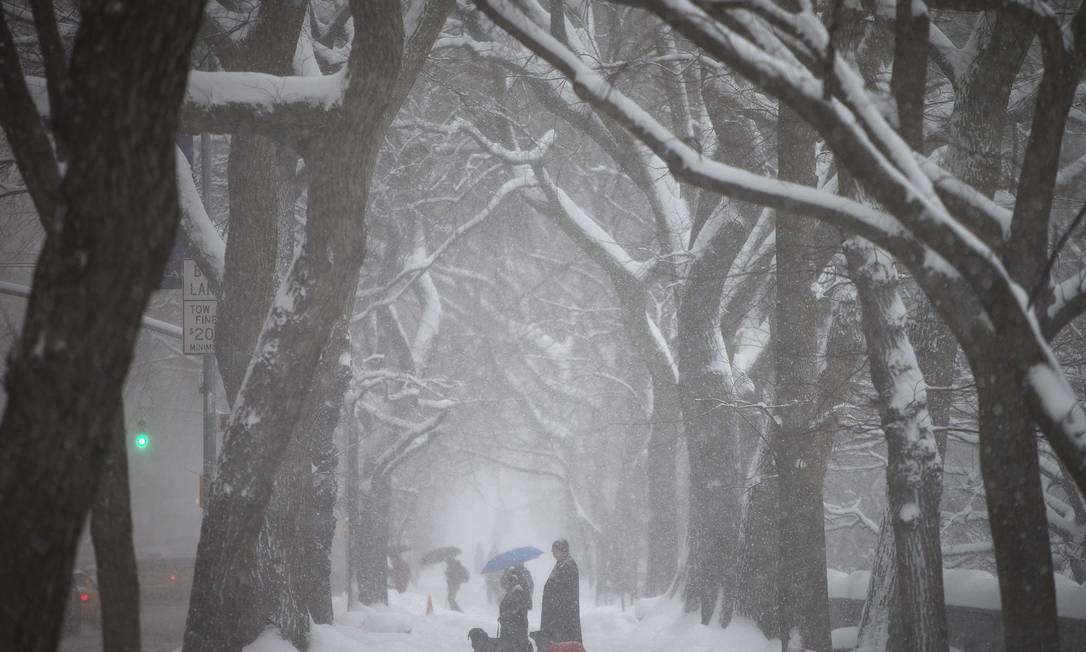 Pessoas caminham no Central Park em meio a tempestade que atingiu Nova York CARLO ALLEGRI / REUTERS